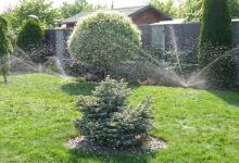 zavlažovaná zahrada
