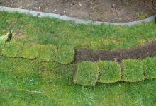 Usazování travních drnů Kroměříž